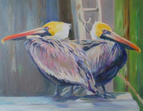web-pelicanwings