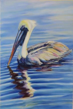 blue water pelican