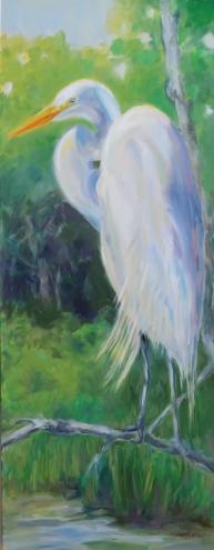 Egret-in-sun