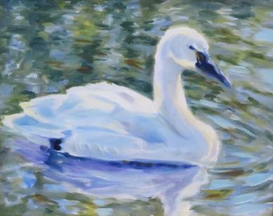 swan-2016