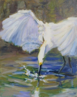 2018-Sipping-Egret